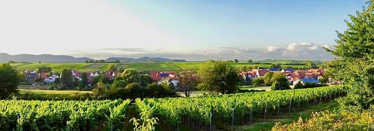 Niederhorbach Panorama